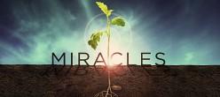 I, Refugee - Miraculous