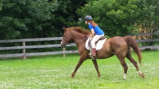 Dublin out for a nice relaxing canter with one of his favorite riders.
