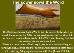 Sowers Sow, Reapers Reap, When God Gives Increase