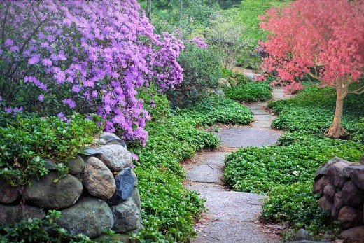 The beautiful pathway into the garden of HubPages.