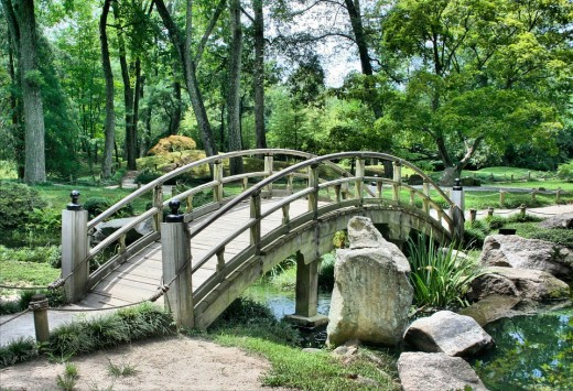 What a beautiful bridge.