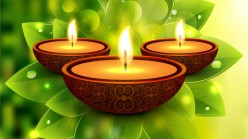Go Green This Diwali