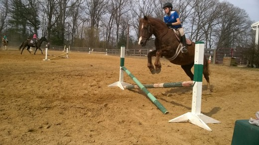 Write down what you think your horse needs the most improvement on. Talk to your trainer about a plan to help your horse improve on his weaknesses.