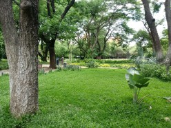 Green Places to Visit in Chennai