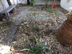 Natural Mulch for Home Garden