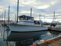 Halibut Fishing in Homer Alaska