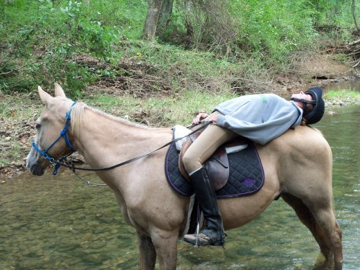 Horses appreciate their bit less bridles, as well as time outside the lesson program, as seen here. My old man Cory and I on a trail ride many moons ago. Best horse ever, may he rest in peace.
