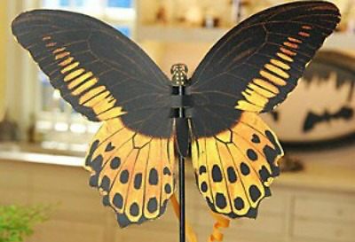 55 Beautiful Butterfly Craft Ideas   HubPages