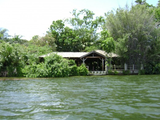 Disney's Abandoned Discovery Island in Florida