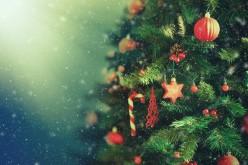I, Refuge - Good News Christmas