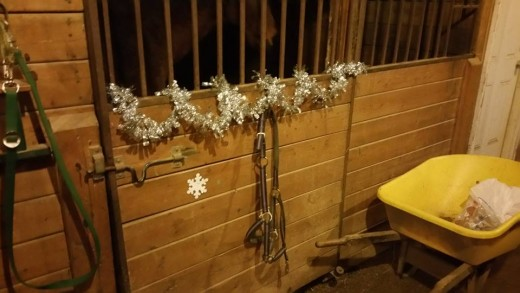 Once the stalls are decked, I'm sure the horses would enjoy a treat or two!