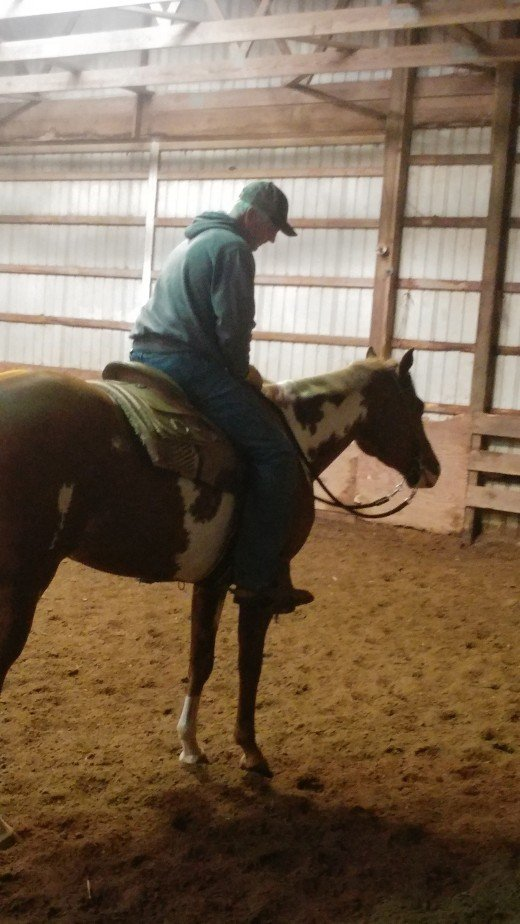 This horse met my all of my clients non-negotiable's , she wished she was a few inches taller, but for the quality of the horse and level of it's training she let a few inches slide.