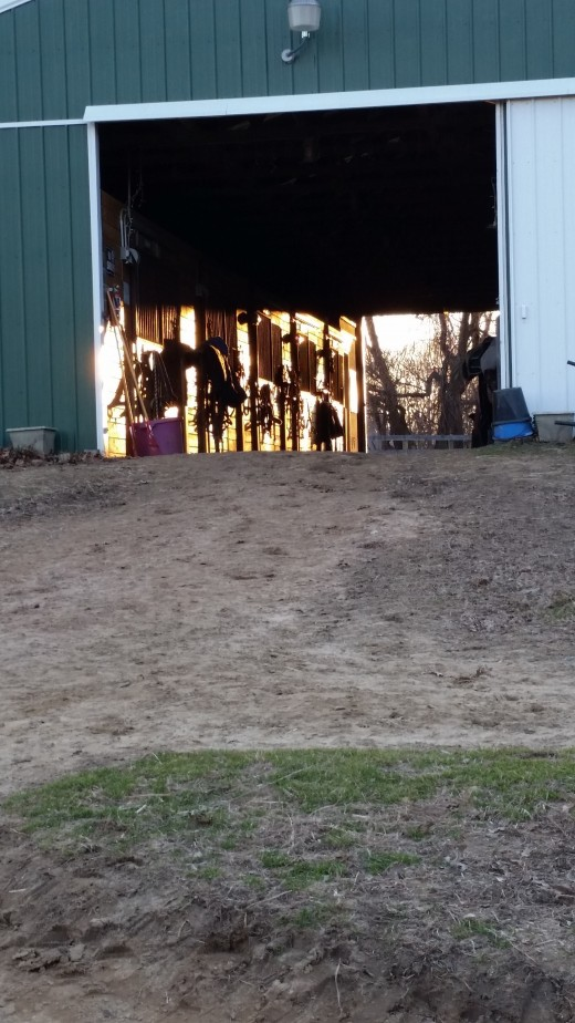 Find out if the barn you are looking at is a quiet adult barn or a kid barn...figure out whether you want to have quiet time at the barn or friends to hang out with.Knowing these things ahead of time will help you to find the right place!