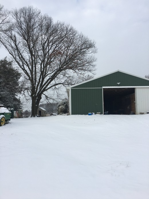 Maybe you want your horse to stay at a barn with a center aisle so on snow days like these you have a warm, dry place to visit your horse!