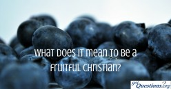 How to lead a Fruitful and faithful Christian life
