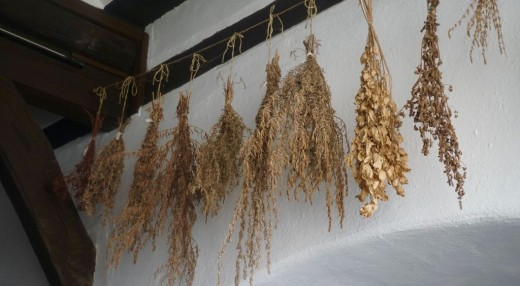 Herbs can be dried at home for future use.