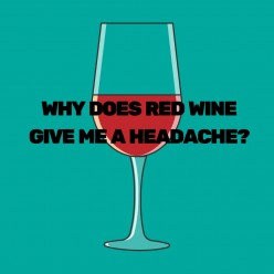 Why Does Red Wine Give Me a Headache? The Possible Causes of Red Wine Headaches and How to Prevent Them