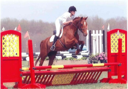 Show jumping phase at one of our early events.