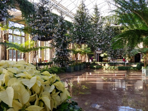 This marble floor is usually kept under water for the ferns, but can be drained and used for special events.  For Christmas, hanging Christmas trees float overhead.