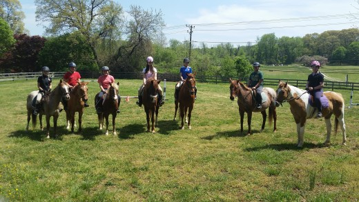 Look at all those nice school horses just waiting to get to know you. This is your year!