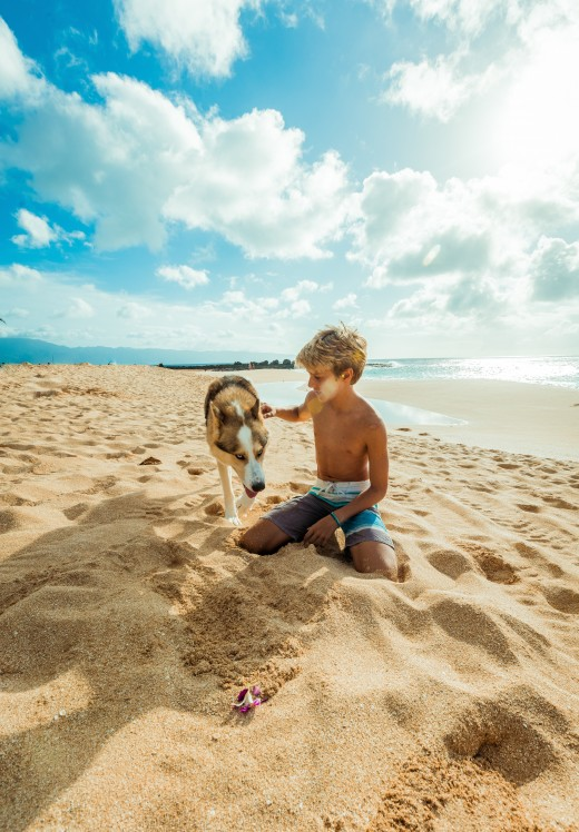Beach Vacation Fun