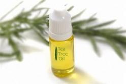 Tea Tree Oil: Nature's Antibiotic