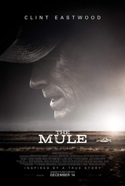 Form Horticulture To Drug Culture: The Mule