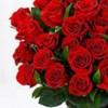 Mamoona Rasheed profile image