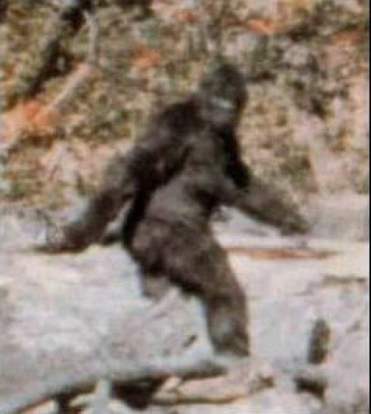 Frame 352 of the Patterson Gimlin Film (enlarged and cropped)