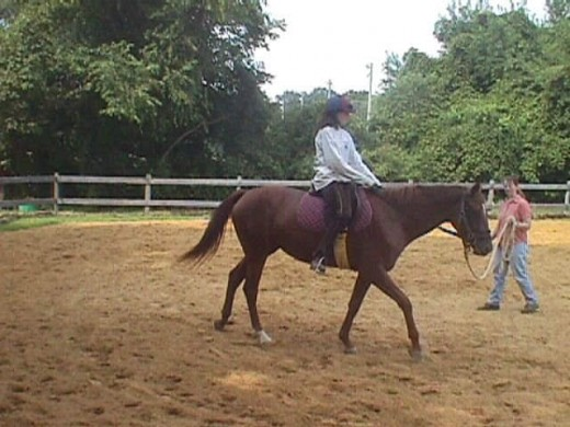 This is my heart horse, Zelda, one of her very first rides when we were breaking her!