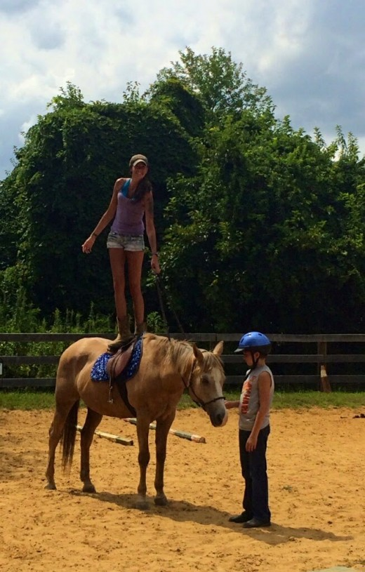 Trick horse Cory