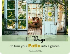 11 Ways to Turn Your Patio Into a Garden