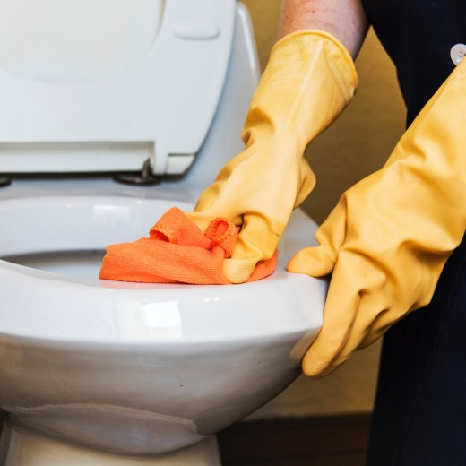You may want to use paper towels instead of microfiber cloths for your toilet bowl.