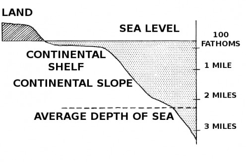 A diagram showing the key features of a continental shelf
