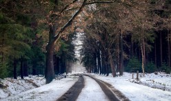 6 Survival Tips when Travelling in Winter
