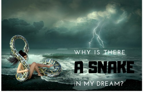 Interpreting the Meaning of Rattlesnakes and Other Snakes in a Dream