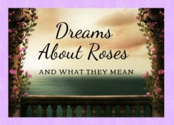 What Do Roses Mean in Dreams?