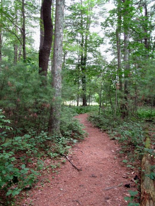 Broadmoor Audubon Wildlife Sanctuary