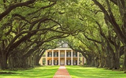 Adding Sweet Southern Style to Your Home