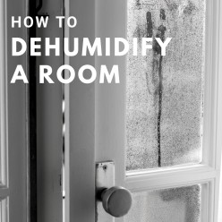 How to Dehumidify a Room Naturally