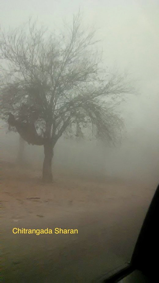 Driving along, on a foggy road