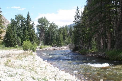 Rock Creek along the Beartooth Highway.
