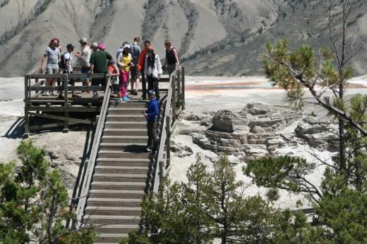 Mammoth Springs Overlook