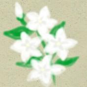 Sampaguita Pearl Anahaw profile image