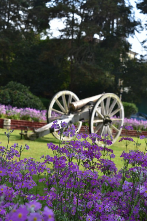 a cannon on display at the botanical garden