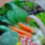 plantingalabama profile image