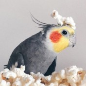 Emhtn06 profile image