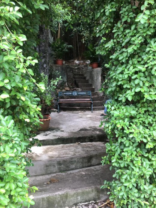 The Golden Mount Compound: Steps leading up somewhere in the middle of the forest-y compound
