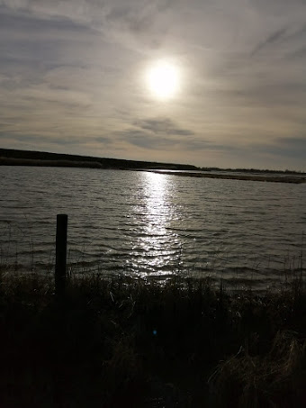 A photo of Frampton Marsh at sunset taken by Paula shortly before we left.