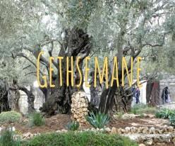 The Agony in Gethsemane